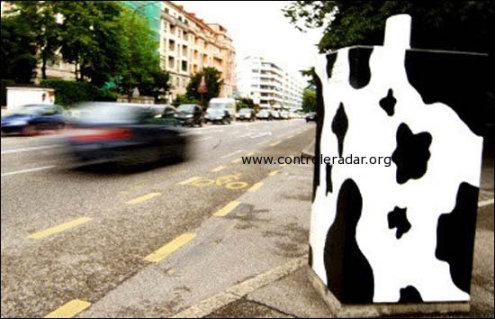 radar vache