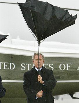 president bush et son air bête